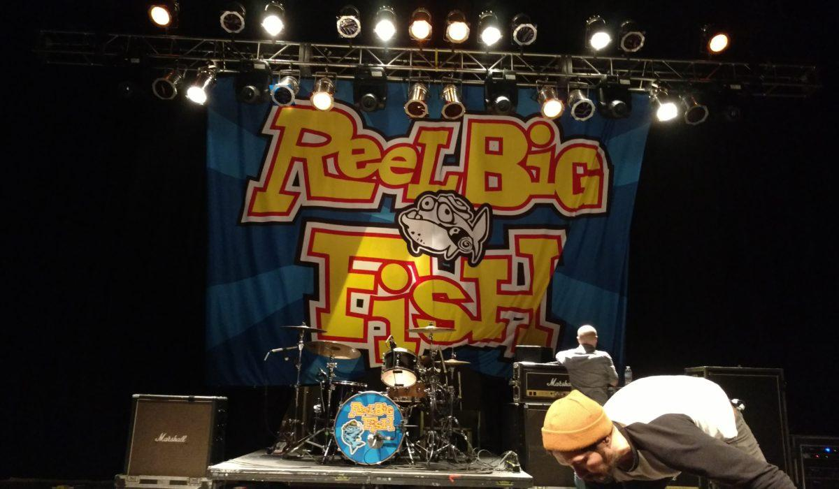 Reel Big Fish 1