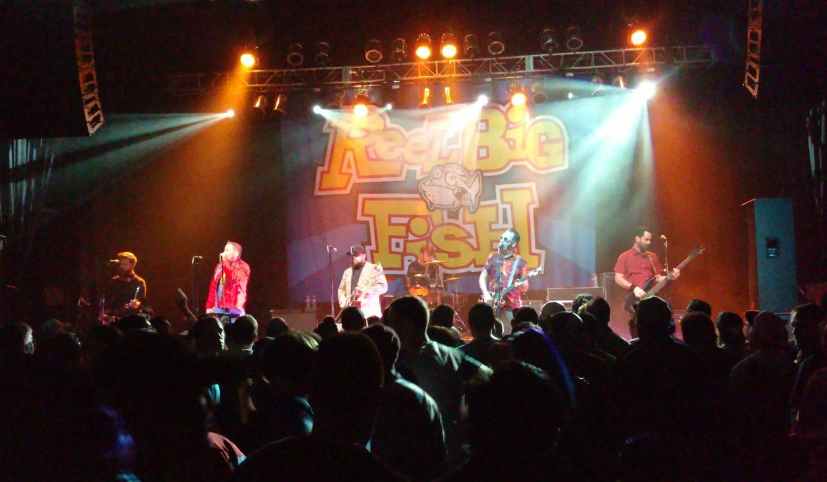 Reel Big Fish 10