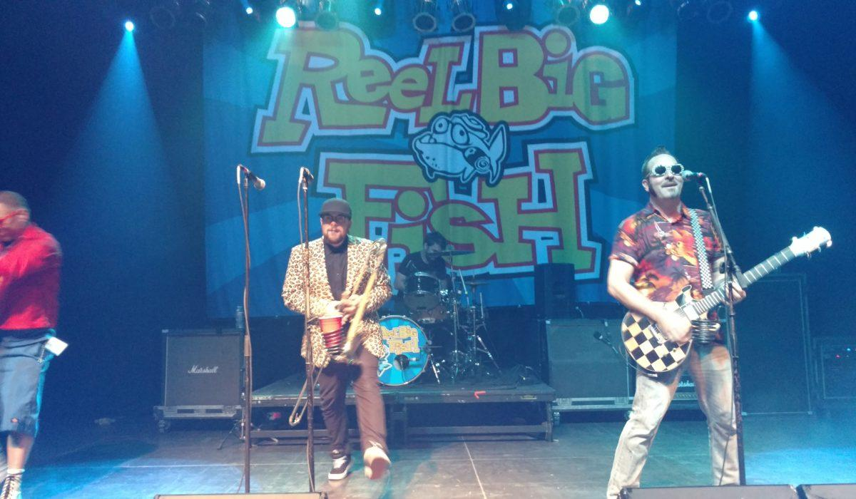 Reel Big Fish 4