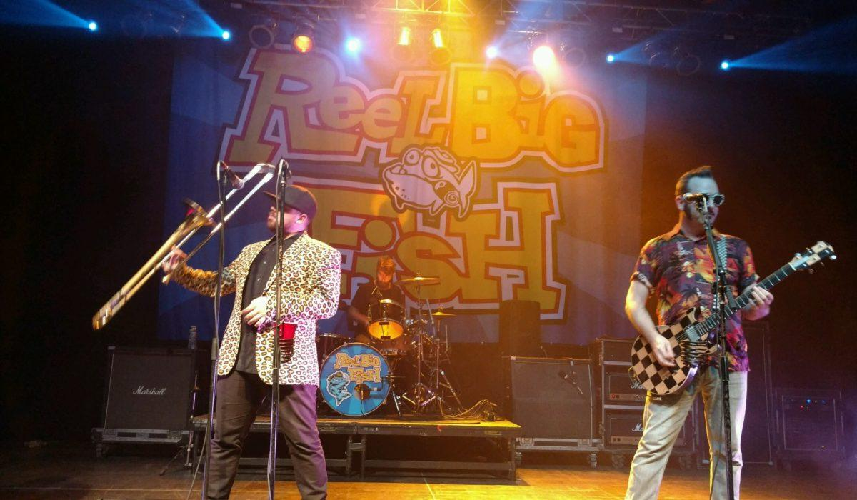 Reel Big Fish 7