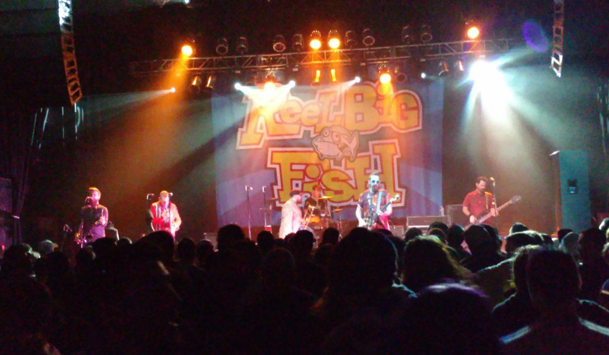 Reel Big Fish 9