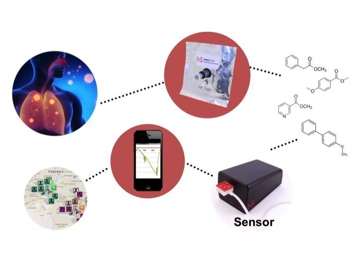 Sensor Setup