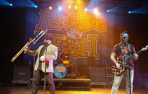 The 20th Anniversary show with Reel Big Fish